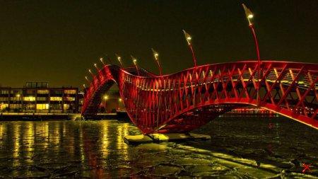 Мост Питон, Амстердам